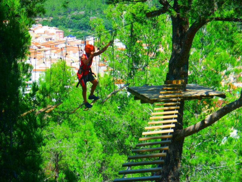 Aventura en el Bosque - Puentes Tibetanos y Tirolina